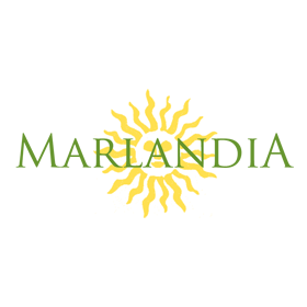 A company importing Brazilian sandals